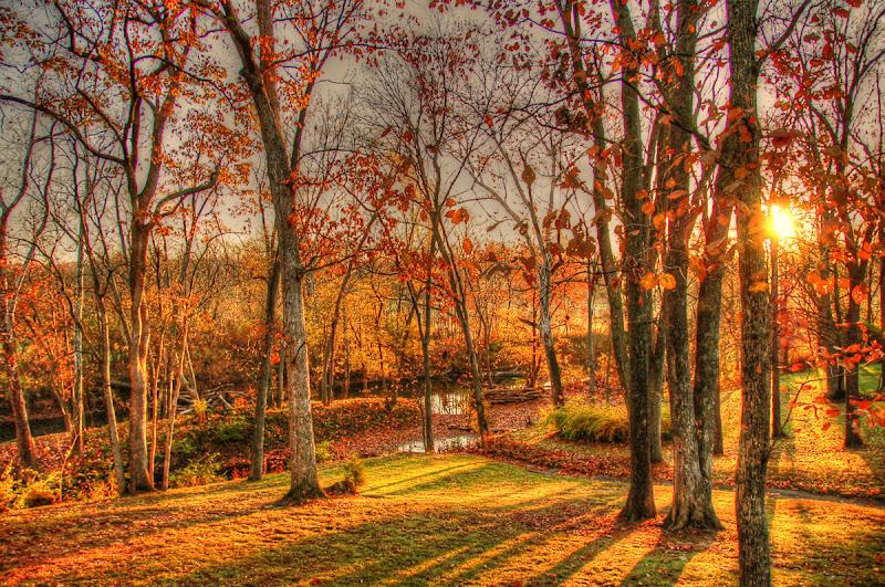 Sunrise in Kentucky